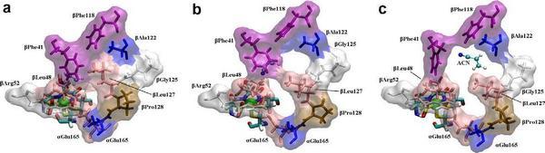 جنبه های مکانیکی فعالیت آنزیمی نیترول هیدراتاز و شبیه