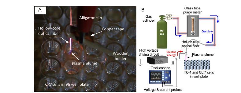 آپوپتوز سلول سرطانی ریه القا شده با میکرو پلاسما