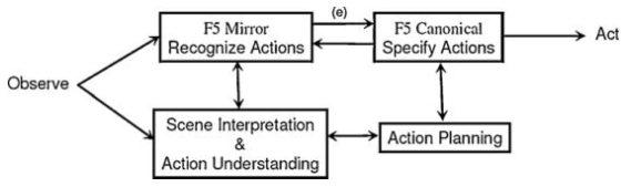 رمزگشایی حرکتی ادراکی در مشاهده و اجرا مشتمل بر منطقۀ F5 برای فعالیتهای دستی در میمون