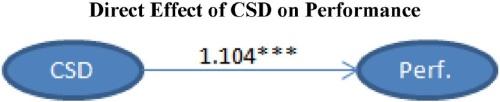 اثر مستقیم بر عملکرد CSD