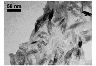 تصویر TEM از نانو TiO2