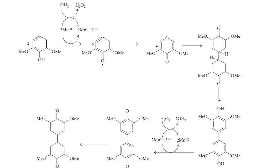 مکانیزم مطرح شده برای اکسیداسیون 2و6 دی متیوکسوفنول توسط سیستم MnP
