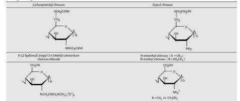 ساختارهای شیمیایی پلی ساکارید