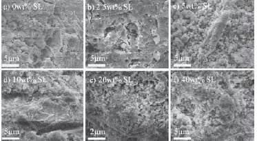 تصاویر SEM برای کامپوزیتهای گرد فولاد- سیمان